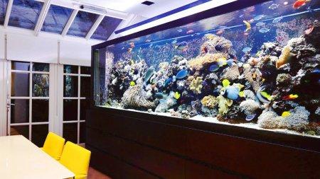 Угловой аквариум на заказ от украинского производителя